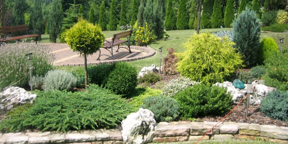 ogrody przydomowe skalniaki pictures - photo #36
